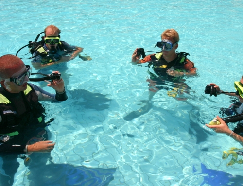 Teaching Your Kids to Dive: PADI Junior Open Water Program